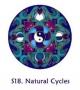 Fensterbild - natürliche Kreisläufe