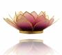 Kerzenhalter Windlicht | Lotus Capiz-Muschel | Goldrand violett